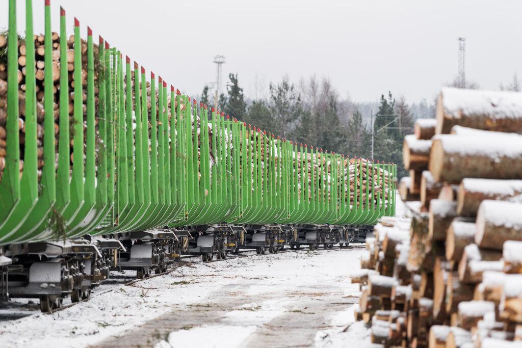 Raakapuuvaunuja talvella
